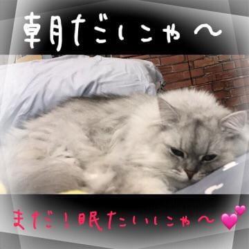りょう「おっはょ〜( ¨̮ )」10/14(土) 09:13 | りょうの写メ・風俗動画