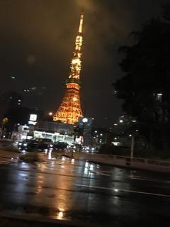 美波すず「これぞ東京。」10/16(月) 22:18 | 美波すずの写メ・風俗動画