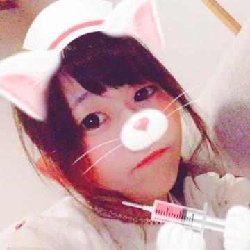 めい「コスモス〜」10/18(水) 20:38 | めいの写メ・風俗動画