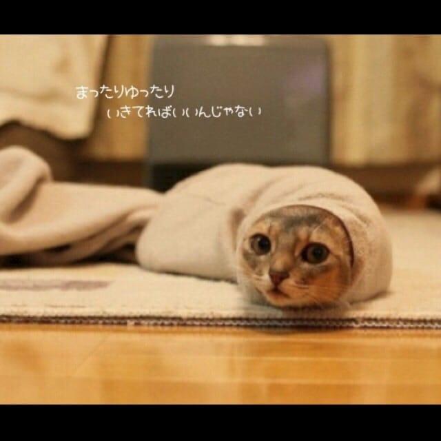 あおい「thank you」10/22(日) 22:34   あおいの写メ・風俗動画