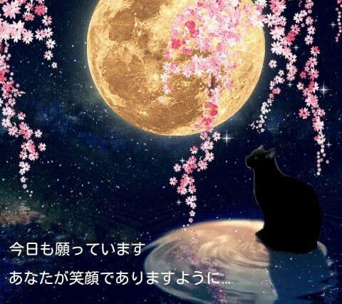 星空 きれい「☆星空です☆」10/24(火) 00:14 | 星空 きれいの写メ・風俗動画