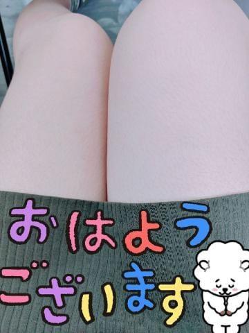「おはようございます?★*゚」09/19(土) 09:14 | 芽衣(めい)の写メ・風俗動画