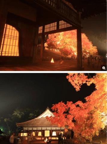 「[お題]from:ブンブンの刑さん」09/26(土) 00:09 | ☆新人 三宅の写メ・風俗動画