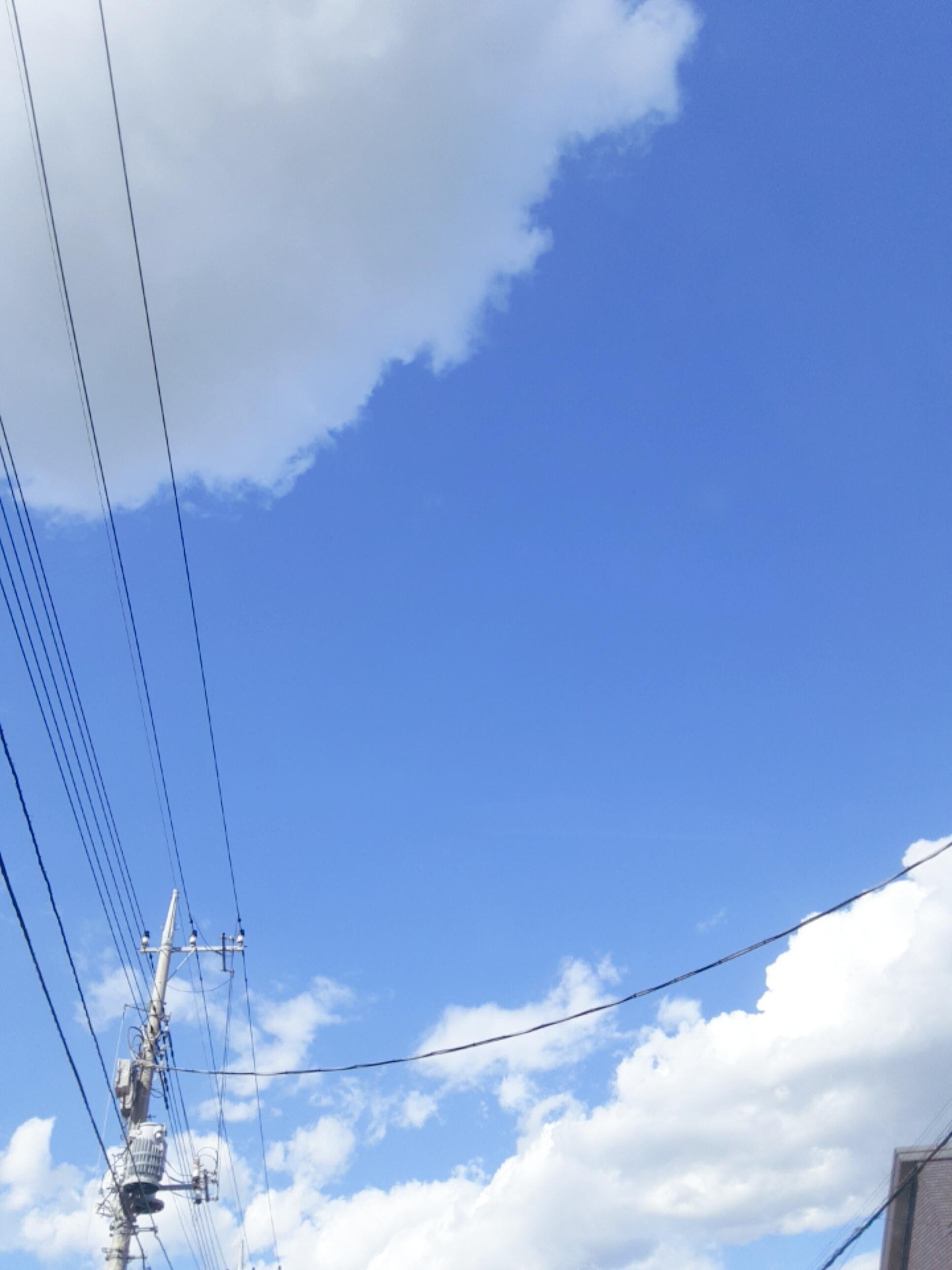 「秋晴☀️」09/28日(月) 14:26   さえの写メ・風俗動画