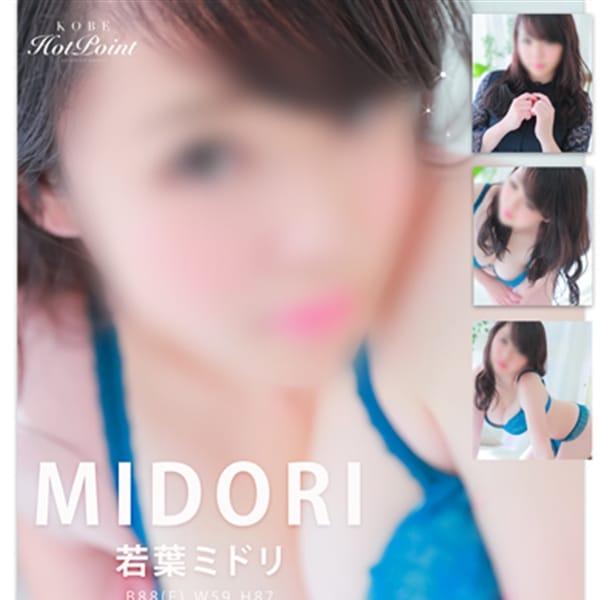 若葉ミドリ【業界未経験のEカップ】 | 神戸ホットポイント(神戸・三宮)