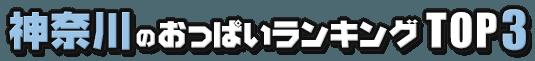 神奈川のおっぱいランキング TOP3