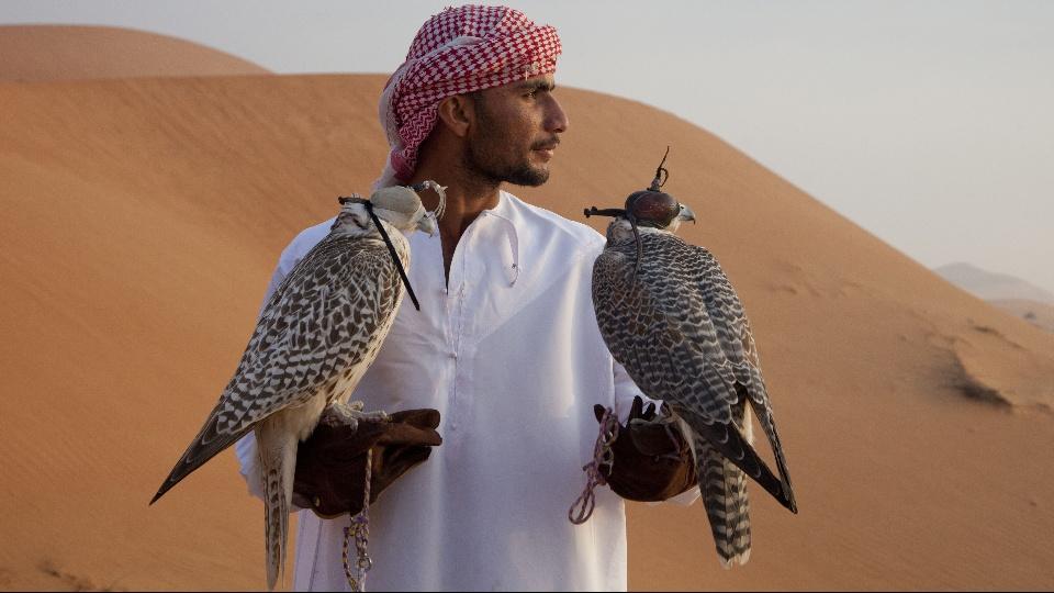 ワイルド・アラビア~神秘の王国|dTV公式‐12万作品が見放題