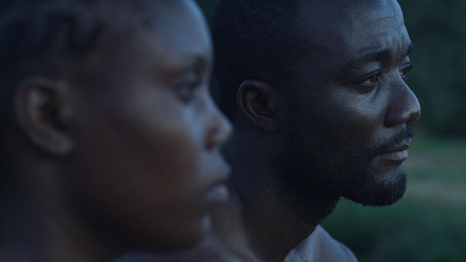 リベリアの白い血 dTV公式‐12万作品が見放題