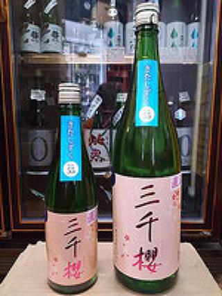 三千櫻 純米 直汲み生原酒 きたしずく 30BY