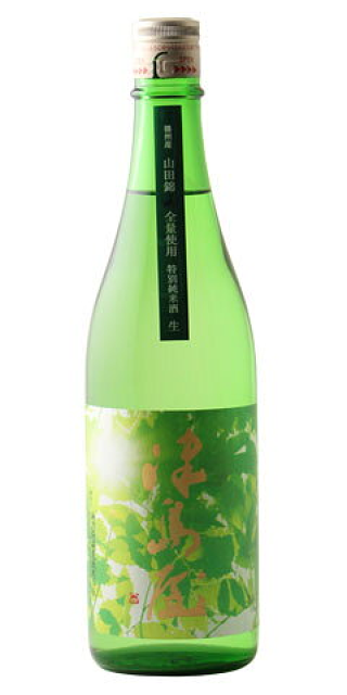 津島屋 木漏れ日 特別純米 無濾過生原酒 播州産山田錦 30BY