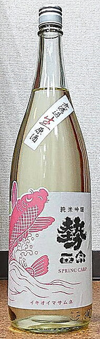 勢正宗 Spring carp 純米吟醸 生原酒 30BY
