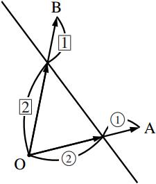 1 次結合で表された位置ベクトルの軌跡の図その6