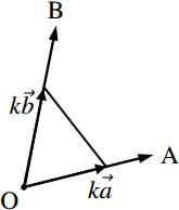1 次結合で表された位置ベクトルの軌跡の図その7