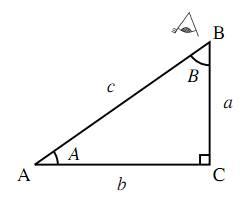 $B$ から見た直角三角形