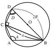 鈍角三角形での正弦定理