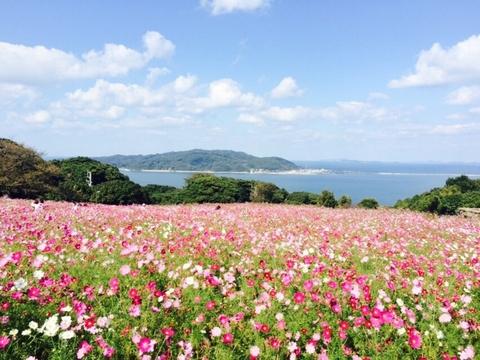 nokonoshima