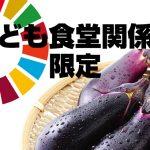 【SDGsアクション:子ども食堂運営者(関係者)限定】規格外ナス4kgを1名様にプレゼント!(送料無料)