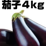 【送料負担】規格外ナス4kgを3名様にプレゼント!