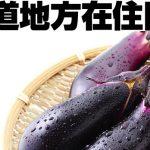 【北海道在住サポーター限定:送料負担】規格外ナス4kgを1名様にプレゼント!