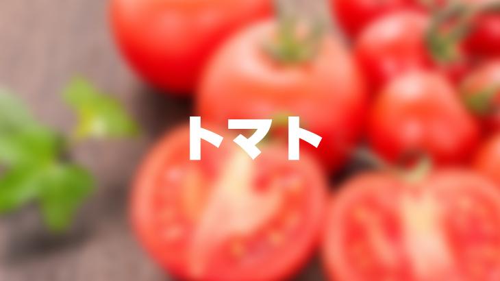 【送料無料】トマト4~5kg