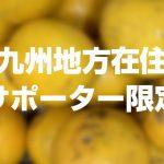 【九州地方在住サポーター限定:送料負担】無農薬落下晩柑5kgを1名様にプレゼント!