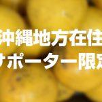 【沖縄地方在住サポーター限定:送料負担】無農薬落下晩柑5kgを1名様にプレゼント!