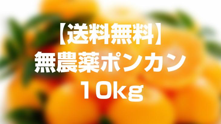 【送料無料】無農薬ポンカン10kgを1名様にプレゼント!