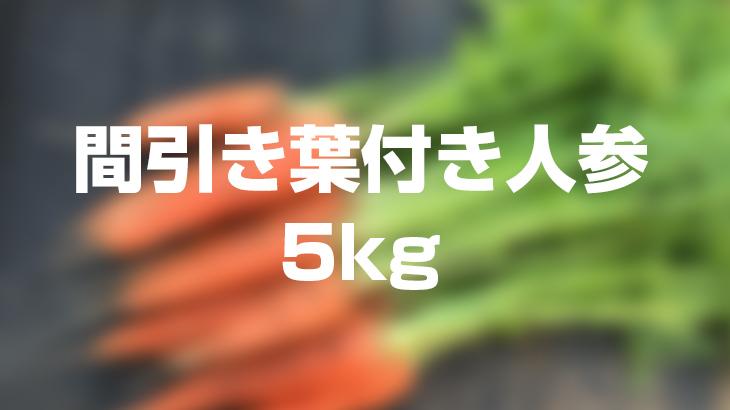 【送料負担】間引き葉付き人参5kgを1名様にプレゼント!