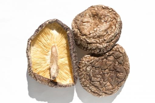 干し椎茸を粉末にして簡単便利栄養満点の活用法!