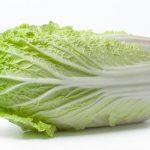 白菜を使った美味しいレシピ