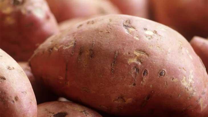 美肌効果とサツマイモ