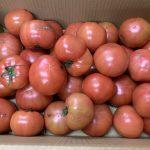【未当選者限定(1)送料負担】トマト4~5kg