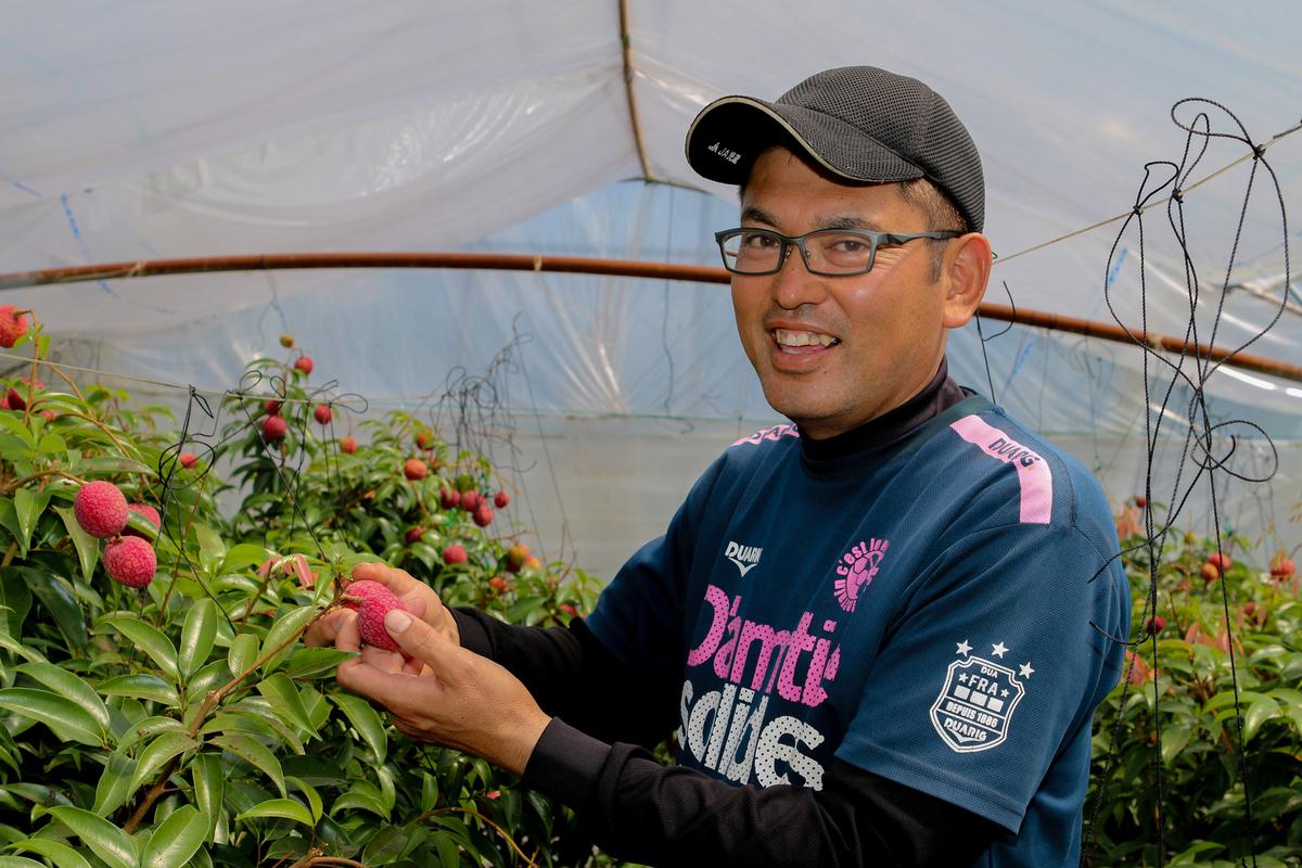 ▲新富のライチ栽培を牽引する森哲也さん。自身も国産ライチの味に感動してライチ栽培を始めました