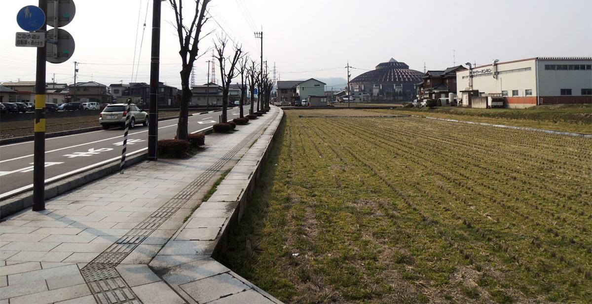ライブなどのイベントの時はこの道を大勢のみなさんが歩かれます。一気に市の人口が増えます!
