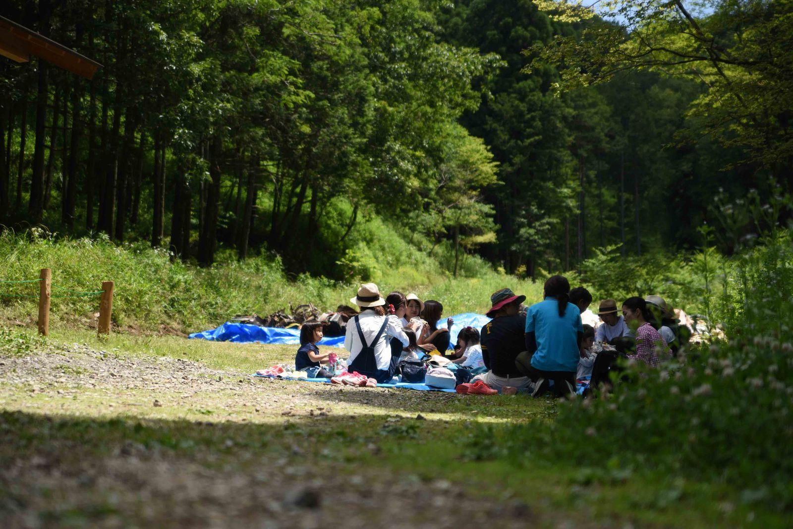 「森のようちえん」では、子どもたちは親と離れて森へ入る
