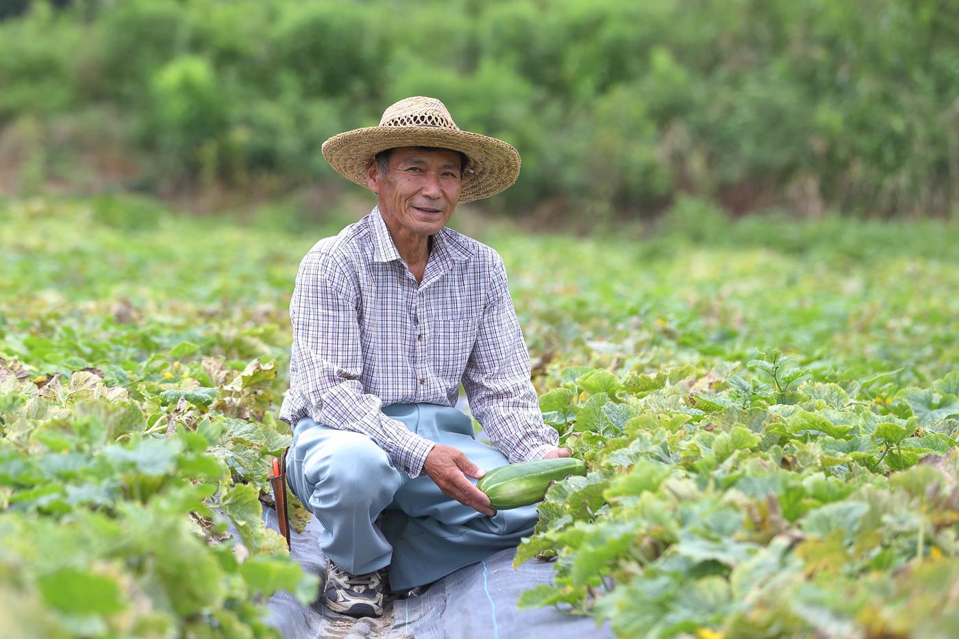 玉造黒門越瓜(たまつくりくろもんしろうり)の生産者、久門明郎さん(67歳)。2ヘクタールの畑を使って、玉造黒門越瓜などの野菜を生産されています。