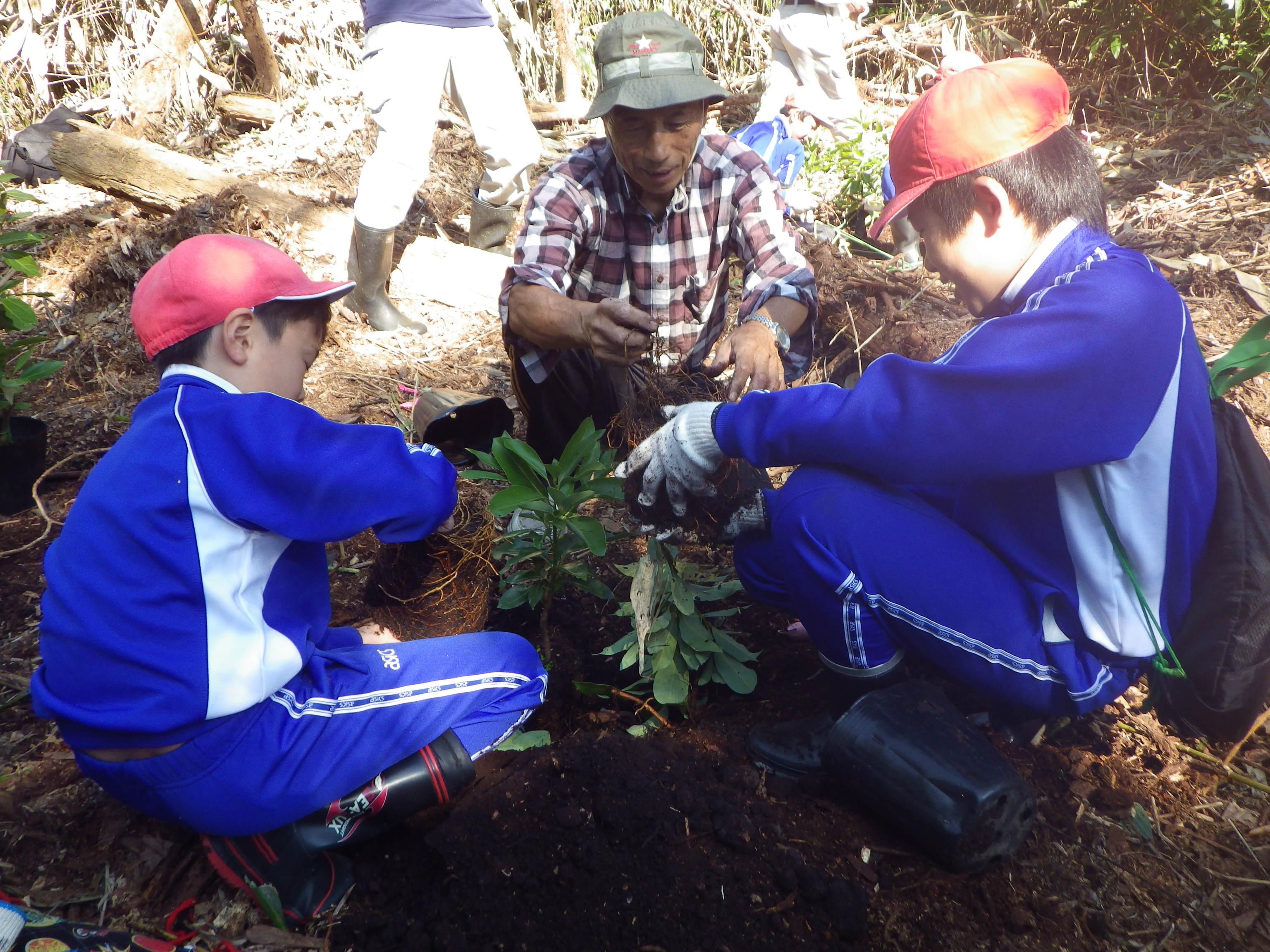 小学生との植樹