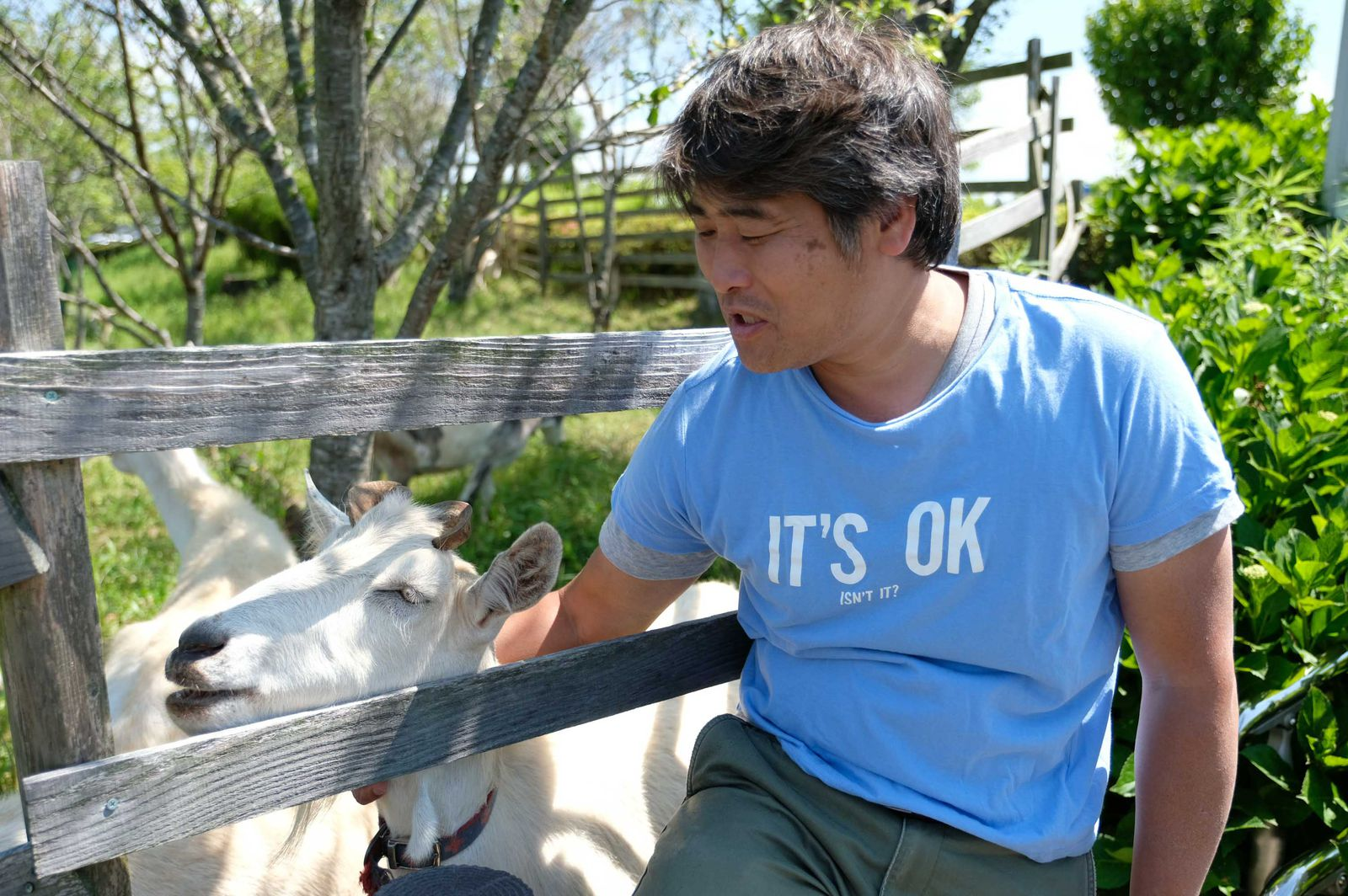 「ヤギさんは一緒に生きるパートナーです」と愛おしそうに語る渡辺さん。その活動が評価され、第46回日本農業賞、地球温暖化防止活動環境大臣賞などを受賞しています