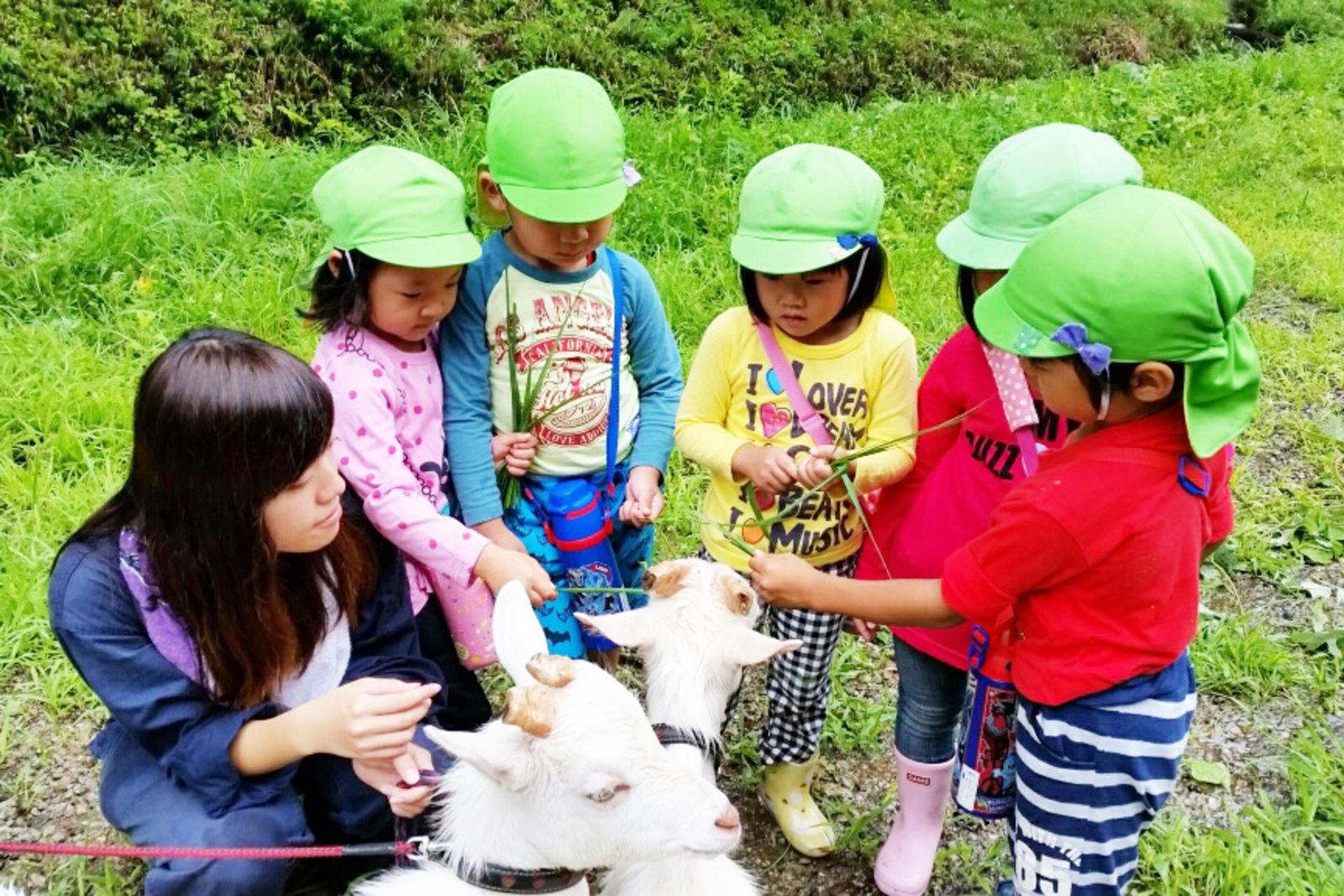 子どもたちにヤギさんのことを教えるのは岐阜大学の学生たち。双方に意義のある交流となっています