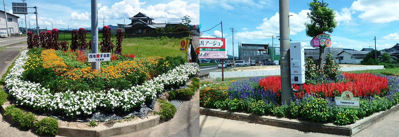 ↑鯖江のまちには、市民のみなさんが丹精込めた花壇がいくつもあります
