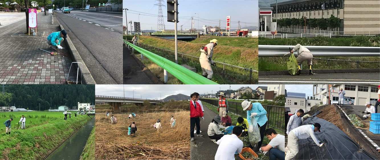 ↑日野川一斉清掃や草刈りなど、市内各所で多くの市民の皆さんに協力していただいています