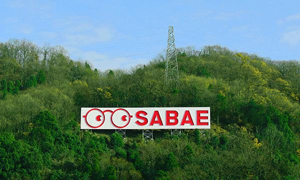 橋立山の中腹から、大きな赤~いめがねで市民を見守る鯖江のシンボル