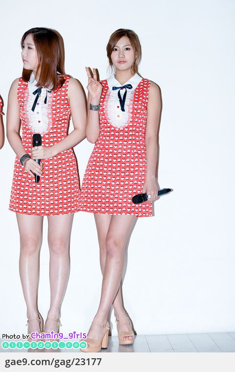 12/12/08 엘소드 5주년 기념파티 - 에이핑크(Apink) By. @Charming_girls_