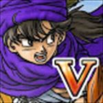 DQ5_icon