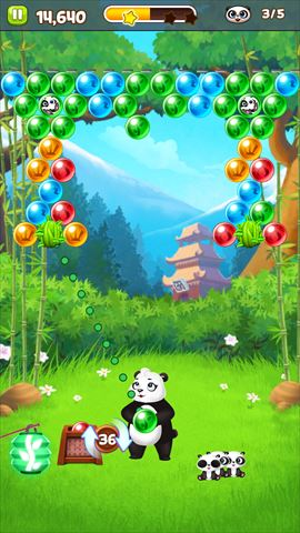review_pandapop_031