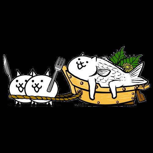 ネコ魚のお造り