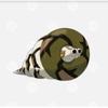 Sandacondaのアイコン
