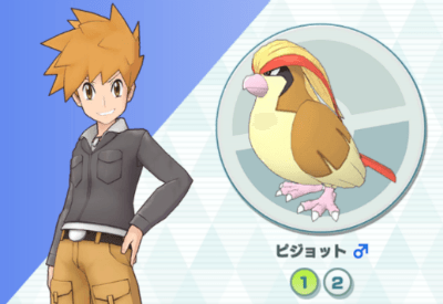 Blue & Pidgeot