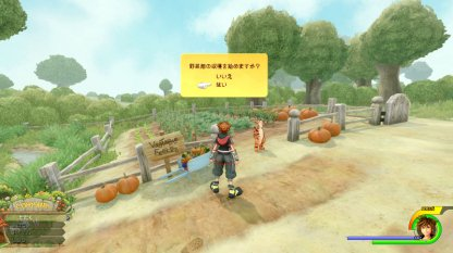 Kingdom Hearts 3 100 Acre Wood Walkthrough