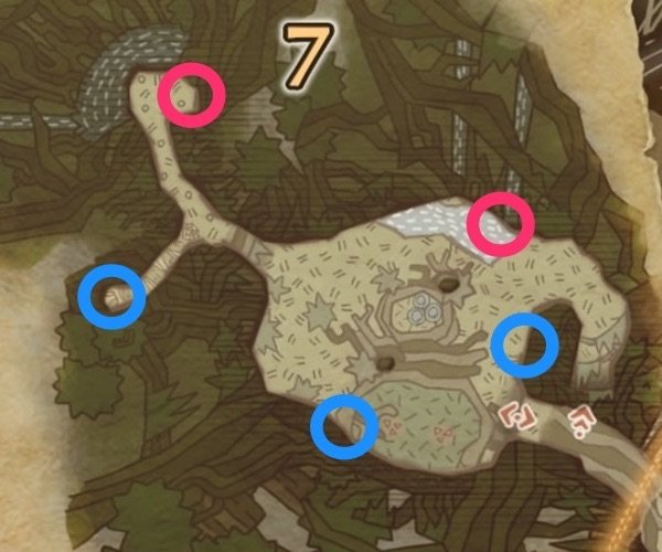Forest Area 7 Locations